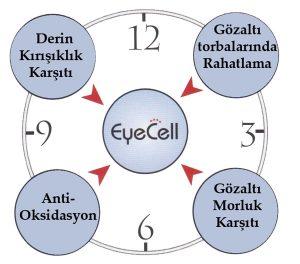 eye-cell-2-Genosys-nurederm